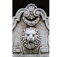 Lion On The Wall Photographic Print