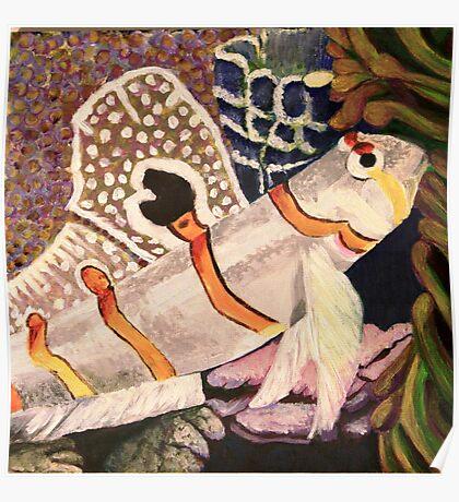 orange banded Gobie  Poster