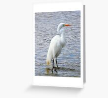 Poser Greeting Card