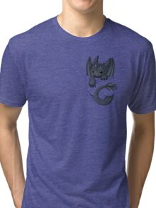 Dragon in your pocket Tri-blend T-Shirt