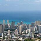 Honolulu 2013 by gernerttl