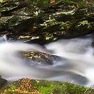 Green flows by bluetaipan