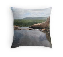 King Leopold Mountain Flow Throw Pillow