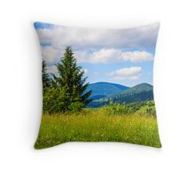 meadow with in the mountains Throw Pillow