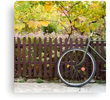 bicycle and fence, circle and square Canvas Print