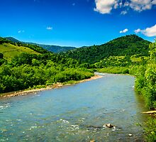 wild mountain river on a clear summer day by pellinni