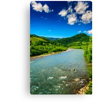 wild mountain river on a clear summer day Canvas Print
