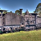 The Railway Graveyard, Dorrigo, NSW by Adrian Paul