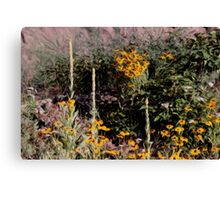 Mulleins And Black Eyed Susan Canvas Print