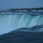Niagara Falls by Barry W  King