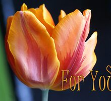 Colorful Tulip For You card by walstraasart