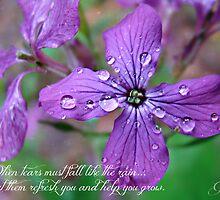 """""""When Tears Fall"""" by Gail Jones"""