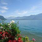 Switzerland View 16 by fladelita