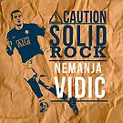Vidic by Terry To