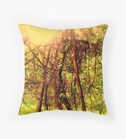 to hold the sun Throw Pillow