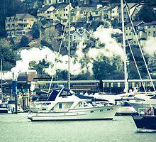 Dartmouth Steam Train by Pauline Mason