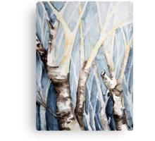 Dreaming Birch Trees Canvas Print