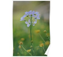 A Cuckoo flower emerges at Downton Abbey Poster
