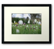 Wildflowers emerge at Downton Abbey Framed Print