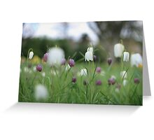 Wildflowers emerge at Downton Abbey Greeting Card