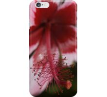 Red and Pink Hawaiian Hibiscus iPhone Case/Skin