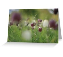 Meadow at Downton Abbey Greeting Card