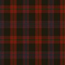 10003 Brown Family Tartan Fabric Print Iphone Case by Detnecs2013