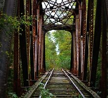 Railway to nowhere by Edie  Young O'Bryant