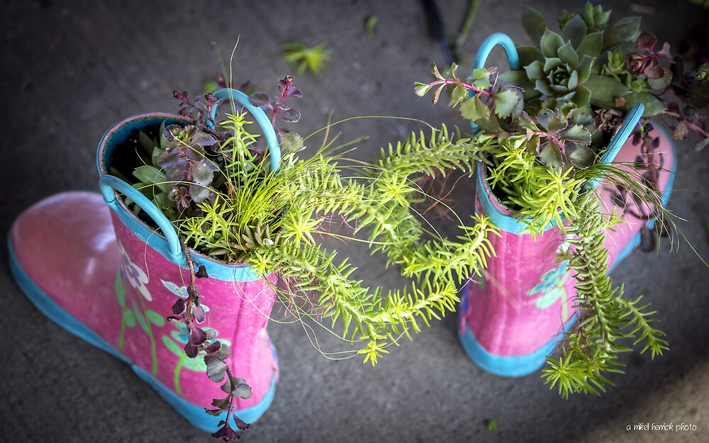These Boots Were Made For Planting by Mikell Herrick