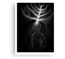Light Entering Mind Canvas Print