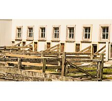 shearing quarters Photographic Print