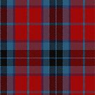 10008 Thompson/Thomson/MacTavish Clan/Family Tartan Fabric Print Iphone Case by Detnecs2013