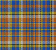02349 Nassau County, New York E-fficial Fashion Tartan Fabric Print Iphone Case by Detnecs2013