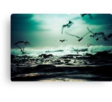 Gone in a blink of the eye Canvas Print