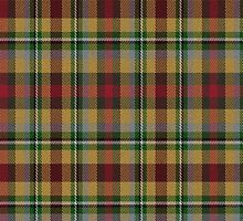 02350 Hillsborough County, Florida E-fficial Fashion Tartan Fabric Print Iphone Case by Detnecs2013