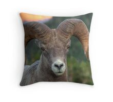 High Line Ram Throw Pillow