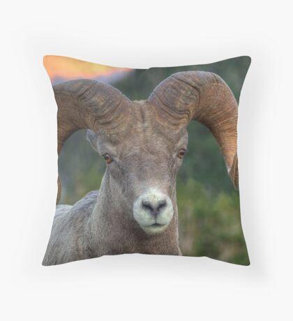 High Line Ram Throw Pillow