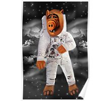 ❀◕‿◕❀ALF RETURNS FROM PLANET MELMAC PICTURE/CARD❀◕‿◕❀ Poster