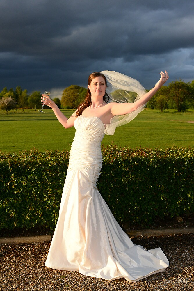 bride by jon  daly