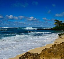 Rugged south shore Oahu Hawaii by raymona pooler