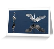 Egrets Two Greeting Card