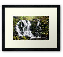 Olivia Creek Cascades  Framed Print