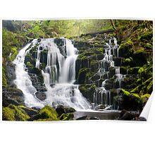Olivia Creek Cascades  Poster