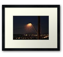 Insects under the streetlight Framed Print