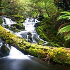Olivia Creek Cascades pt 2 by bluetaipan