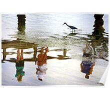 Bird Watching Reflection Poster
