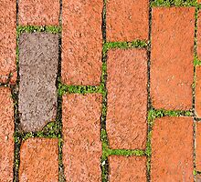 Brick Grass by biffmitchell