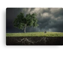The soul of the nature Canvas Print