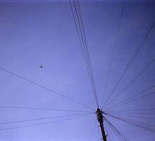 Plastic Camera 083 by Michel Meijer