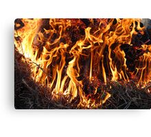 Fire in the forest Canvas Print
